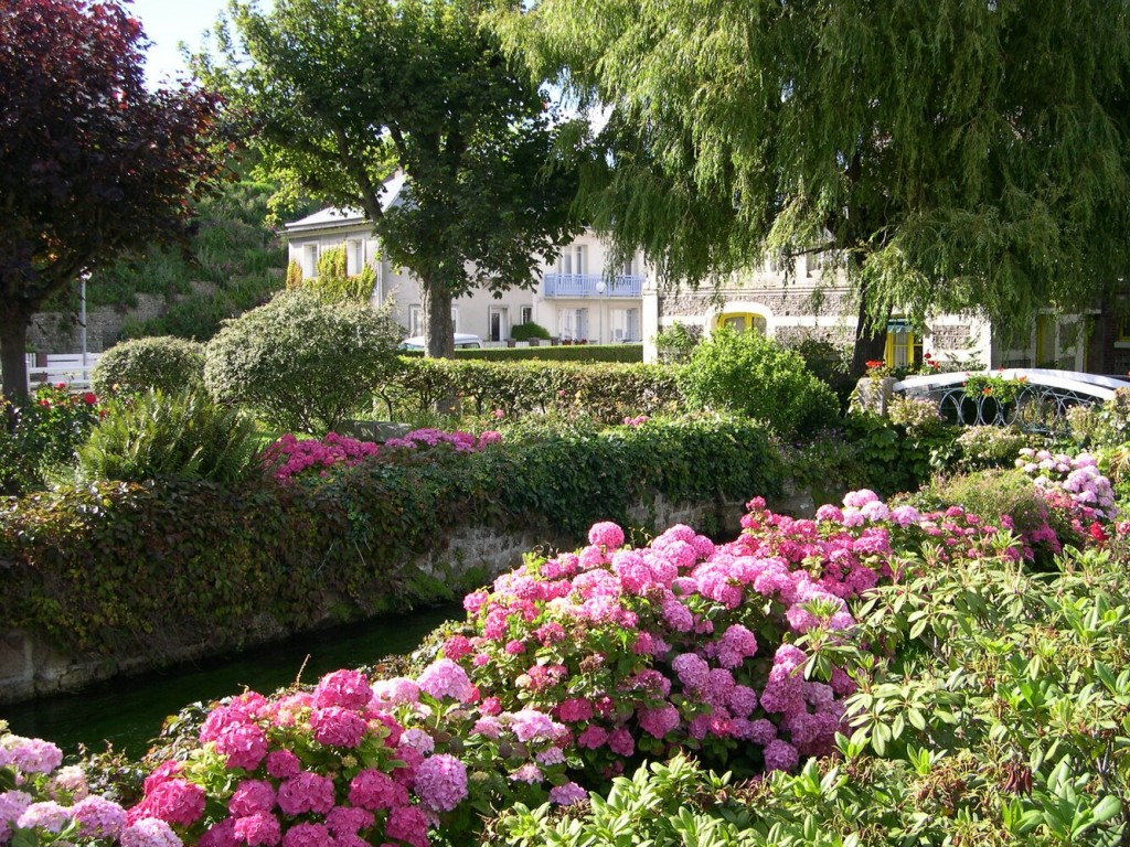 veules-les-roses_fleurs